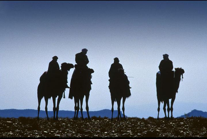 Sahara-Riders